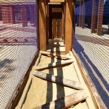 Atelier snake dans l'Acro'Brik Bas