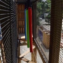 Atelier snake dans l'Acro'Brik Haut